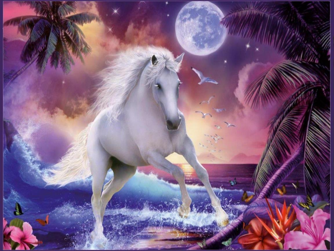 Fond ecran cheval for Magnifique fond ecran